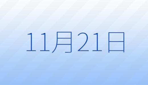 11月21日は何の日?記念日、出来事、誕生日占い、有名人、花言葉などのまとめ雑学