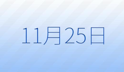 11月25日は何の日?記念日、出来事、誕生日占い、有名人、花言葉などのまとめ雑学