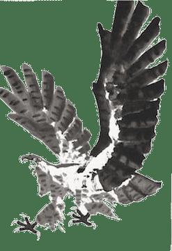 鷹の水墨画